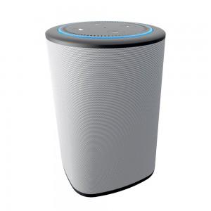 VAUX Portable Speaker for Echo Dot - Grey