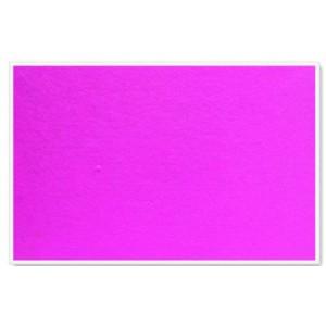 PARROT INFO BOARD PLASTIC FRAME 1200*900MM PINK