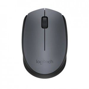 Logitech M171 910-004642, Wireless, 1000dpi, Nano USB, Black and Silver