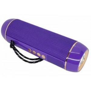 Microworld H13 Purple Bluetooth Speaker / USB / FM / MicroSD