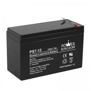 Power Kingdom BA1195T 12V 7AH Battery