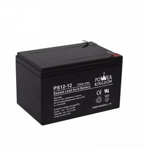 Power Kingdom BA1203T 12V 12AH Battery