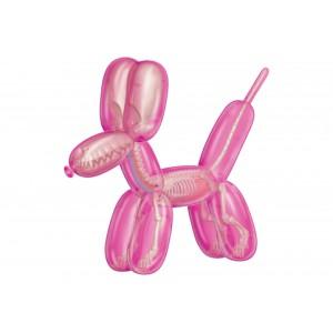 Balloon Dog Anantomy: Pink