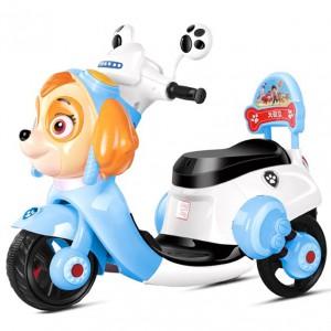 Kids Electric Bike - Paw Patrol Skye (6V/4Ah/20HR Rechargeable Valve Regulated Lead-Acid battery)