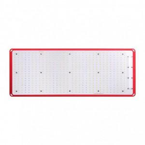 Kingbrite 240W J Series Quantum Board – White