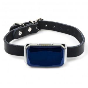 GPS Tracker Collar for Dog