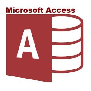 Access 2016 Sngl OLP NL
