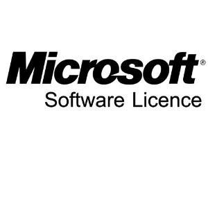 Microsoft Windows Remote Desktop Services - license & software assurance - SNGL LicSAPk OLP NL Acdmc DvcCAL
