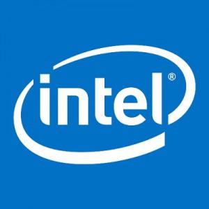 Intel ECS TM105A PLUG