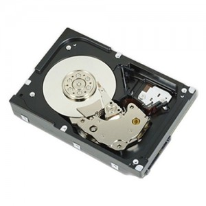 Dell 1TB  Hot-Plug Hard Drive 3.5 inch (HDD)