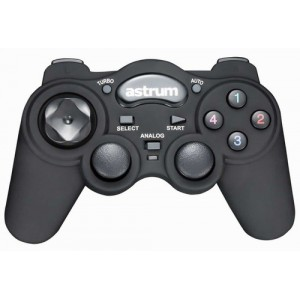Astrum [GP210] Vibration Gaming Joypad For PC A71521-B