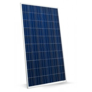 EnerSol 300W Solar Panel