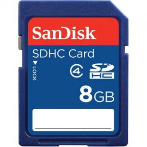 SanDisk 8GB SDHC Memory Card Class 4 (SDSDB-008G-B35)