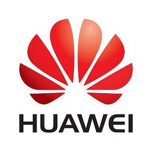 Huawei Network BC1M01FGEB SM211 2xGE Interface Card PCI Express 2.0 x4