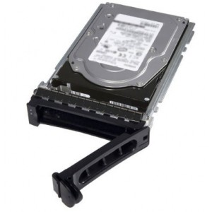Dell 1TB 7.2K RPM NLSAS 12Gbps 512n 3.5in Cabled Hard Drive,CusKit (400-ALOO)