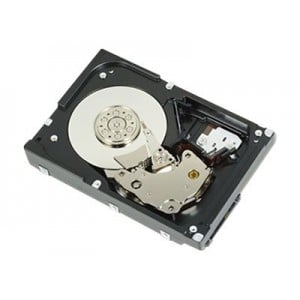 Dell 1TB 7.2K RPM NLSAS 12Gbps 512n 3.5in Hot-plug Hard Drive,CusKit