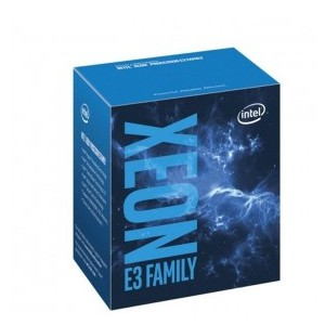 Intel Xeon Processor E3-1220 v6 (8M Cache 3.00 GHz) 4 Core 4 Thread