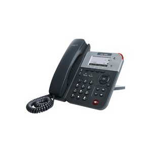 ESCENE 2 LINE PROFESSIONAL WIFI IP PHONE WS290-PN