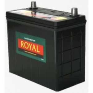 Royal Delkor NS60 45AH Deep Cycle Battery - 12 Volt