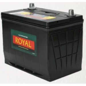 Royal Delkor NS70 65AH Deep Cycle Battery - 12 Volt
