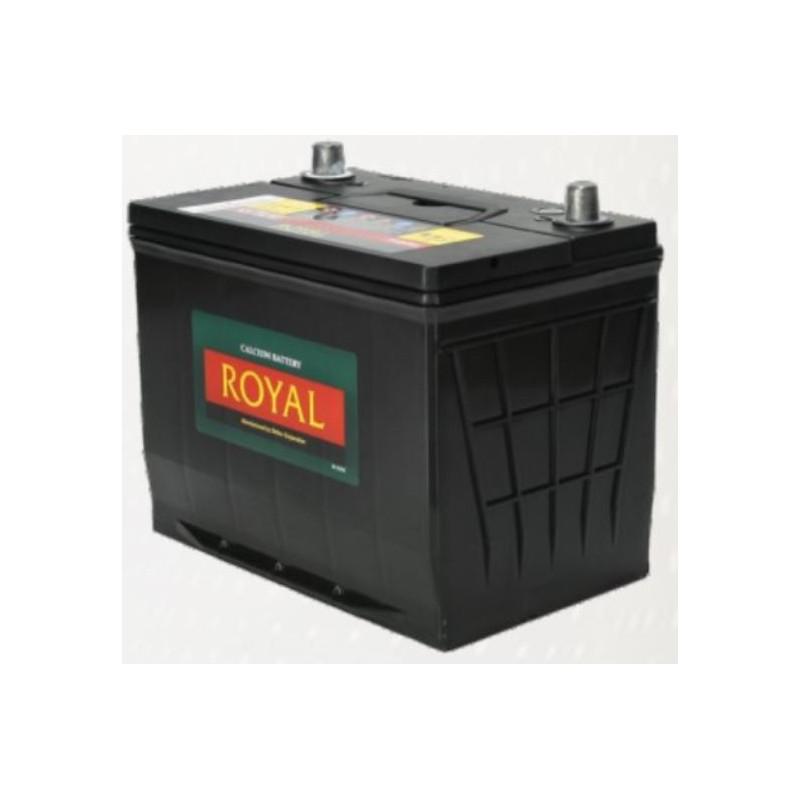 Royal Delkor NS70 65AH Deep Cycle Battery - 12 Volt