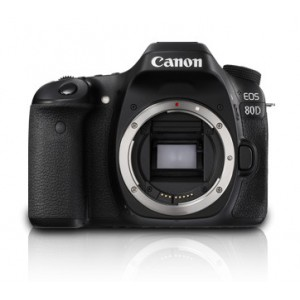CANON EOS 80D BODY ONLY KIT Includes EOS 80D Body ; Neck strap ; LC-E6E charger ; LP-E6N Battery ; video cable ; software. 24MP