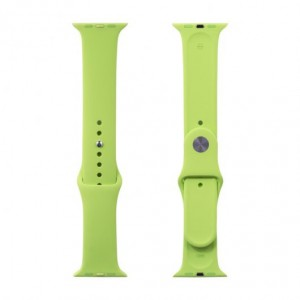 Apple Silicone Watch Strap 42mm-Light Green