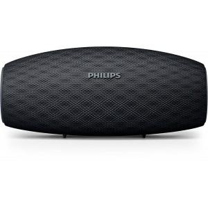 PHILIPS BT6900B Active Bluetooth Speaker
