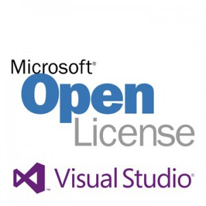 Microsoft Visual Studio Professional Edition with MSDN - License & Software Assurance - 1 User - Medialess