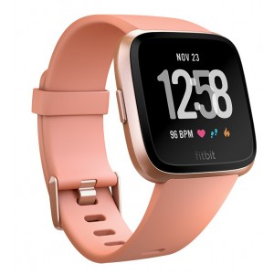 Fitbit Versa Smartwatch - Gray Silver (with Small and Large Bands)
