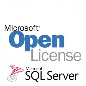 Microsoft SQL Server Standard 2014 SNGL OLP No Level - Medialess