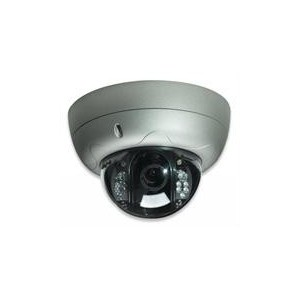 Intellinet 550413 PRO Serie R Network Dome