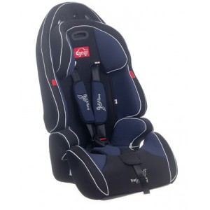 Fine Living 8000532 Baby Car Seat (NAVY)